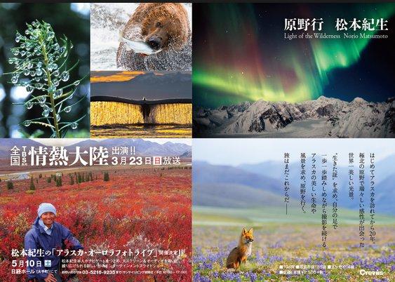 松本紀生(まつもとのりお)のwikiや結婚は?クレイジーな写真家のアラスカ生活について!