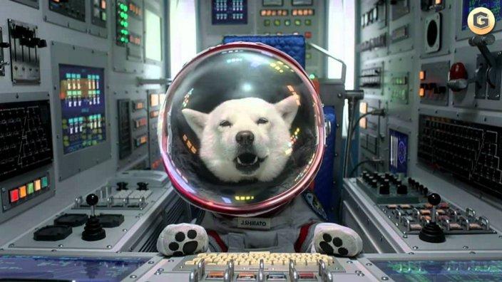 ソフトバンクCM父親が犬の理由や意味は?白戸家の設定真相とは?