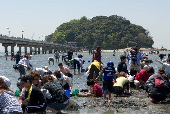 愛知の潮干狩り無料の穴場はどこ?時期やおすすめスポットを調べてみた!