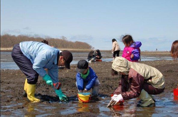 関東の潮干狩り穴場無料スポットはどこ?時期やシーズンはいつ?
